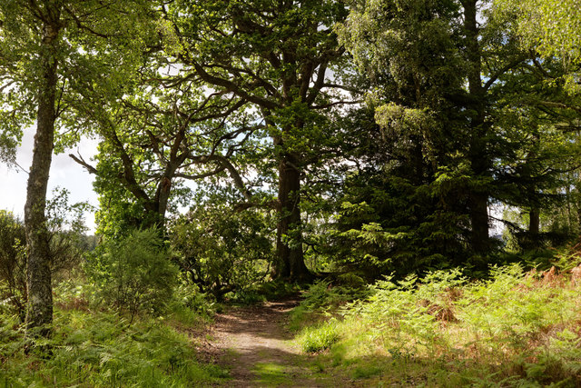 Path between the River Beauly and Balblair Wood