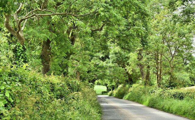 The Cunningburn Road, Ballyblack near Newtownards (June 2019)