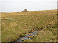 NY8446 : Middlehope Burn below Pry House by Mike Quinn