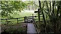 SO0053 : Footbridge on the Wye Valley Walk by John Lucas