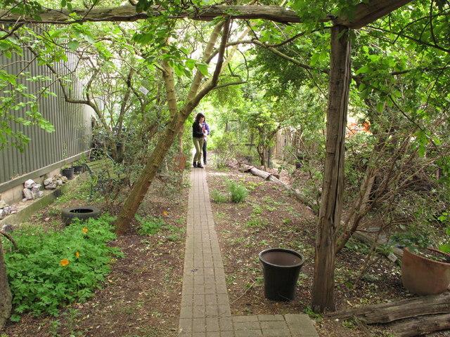Alara Permaculture Forest Garden