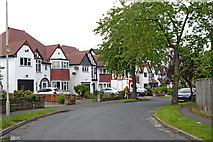 SO9096 : Coalway Avenue in Penn, Wolverhampton by Roger  Kidd