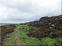 SD9521 : Footpath at Stony Edge by David Brown