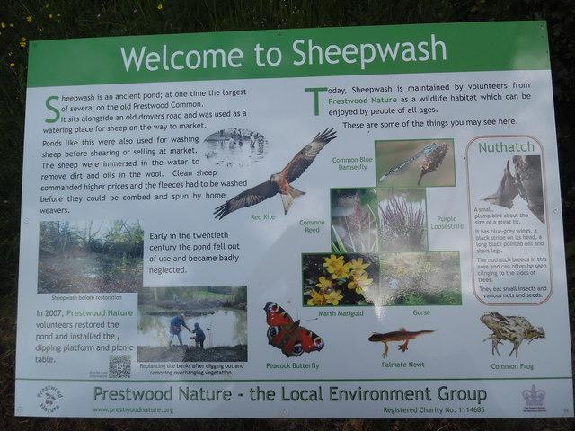 Information Board at Sheepwash Pond, Prestwood (2)