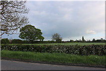 SP4775 : Lawford Fields by Rugby Road by David Howard