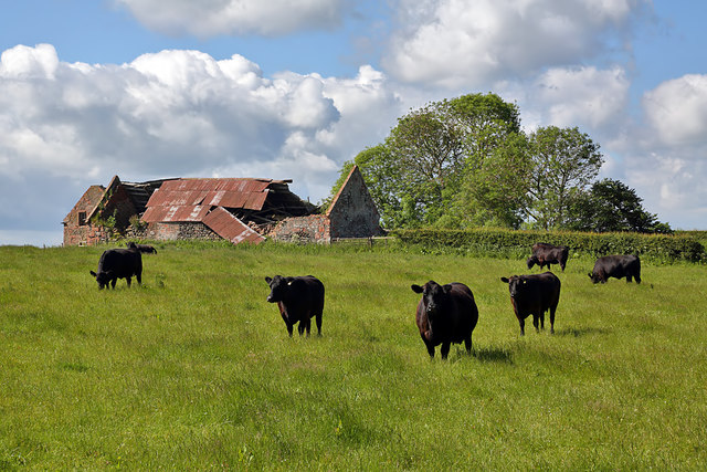 Farmland at Haymount