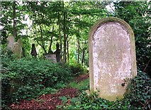 TG2408 : The grave of the Darken Family by Evelyn Simak