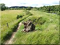 NY9165 : Damage to floodbank in Kingshaw Haugh by Oliver Dixon