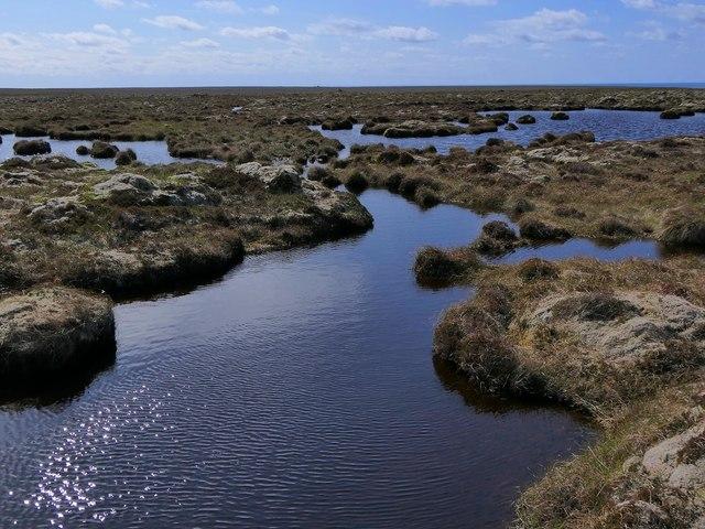 Moorland pools to the west of Loch Ruiseabhat, Isle of Lewis