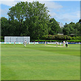 TQ5838 : Tunbridge Wells: the first ball of the match by John Sutton