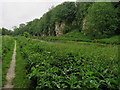 SK5374 : Creswell Crags: the Nottinghamshire side by John Sutton