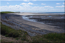 SD2063 : Beach at Low Bank by Ian Taylor