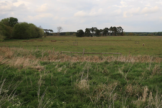 Icklingham Plains