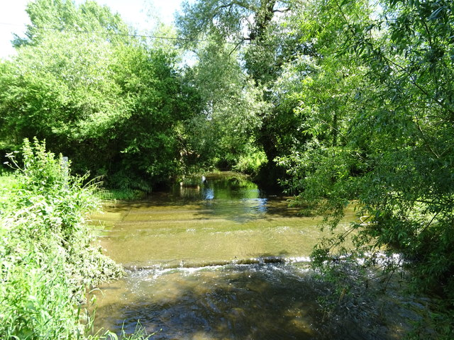 The Shell Brook