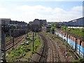 NS5863 : Eglinton Street railway station (site), Glasgow by Nigel Thompson