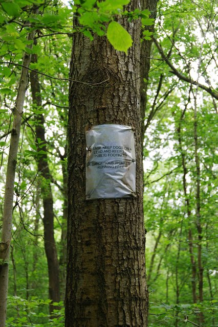 Warning notice on tree, North Wood (part of Ockeridge Wood), near Wichenford, Worcs