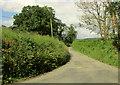 SS4810 : Lane to Buckland Filleigh by Derek Harper