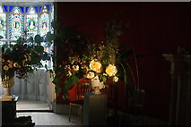 TQ1572 : View of flowers lit by a floodlight in Strawberry Hill House by Robert Lamb