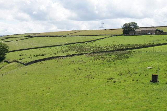 Pennine fields by Upper Wormald Farm