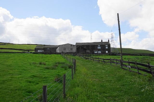 Upper Schole Carr
