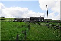 SE0118 : Upper Schole Carr by Bill Boaden