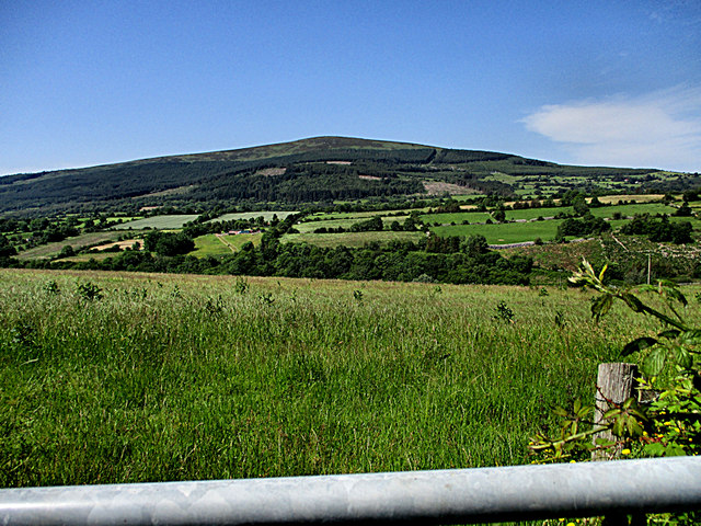 Meadow and Hill
