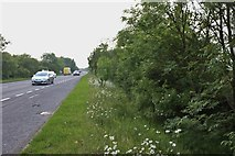 TF0073 : Layby on the A158, Lincoln by David Howard