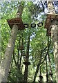 SC2776 : Ape Mann adventure park (2) by Richard Hoare