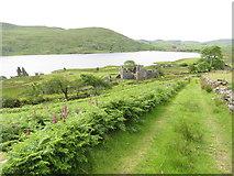 SH5544 : View down towards Tal-y-llyn Farm and Llyn Cwmystradllyn by Gareth James
