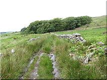 SH5645 : Route of the Gorseddau tramway near Cwmystradllyn by Gareth James