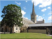 TG2308 : Norwich Cathedral by Roger Cornfoot