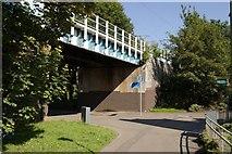 NS5566 : Railway Bridge, Ferry Road by Mark Anderson