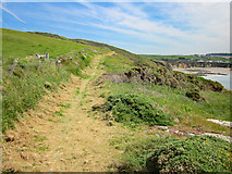 SH2989 : The Anglesey Coastal Path near Porth Swtan (Church Bay) by Jeff Buck