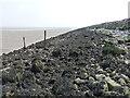 SJ1878 : Rocky shoreline along the Dee Estuary by Mat Fascione