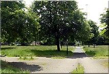 NS5664 : Plantation Park, Cessnock by Alan Murray-Rust