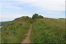 NW9954 : The Southern Upland Way north of Portpatrick by Graham Robson