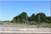 SP8681 : Pedestrian crossing on the A43 north of Kettering by David Howard