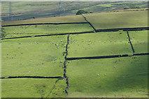SE0118 : Pennine fields by Bill Boaden