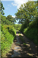 SS7227 : Track to Brown's Marsh by Derek Harper