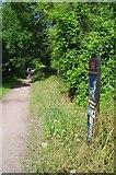 TL6921 : Flitch Way at Braintree Rd by Glyn Baker