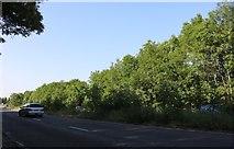 SP8585 : Uppingham Road, Corby by David Howard
