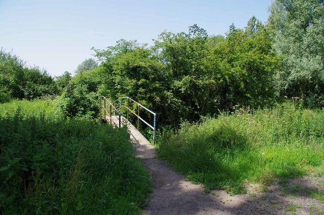 Footbridge Over The Chelmer