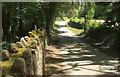 SS6828 : Lane from Shallowford Bridge by Derek Harper
