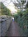 SP7610 : Alleyway, Dinton by Rob Farrow