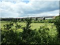 SK4743 : Bennerley Viaduct, from the east by Christine Johnstone
