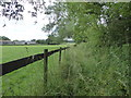 SU3299 : Neglected footpath, Buckland Marsh Farm by Vieve Forward