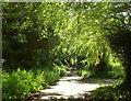 SS6832 : Hudley Mill Hill by Derek Harper