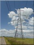 TF1839 : Pylon on Little Hale Fen by Bob Harvey