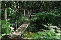 SU9456 : Bridge Across the Stream by Peter Trimming