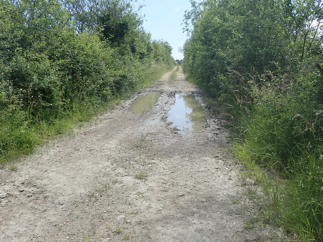 Muddy track linking Racecourse Road with the trackbed of the former Dundalk to Newry Railway line